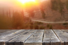Rustic wooden planks in front of forest landscape in sunset Royalty Free Stock Photo
