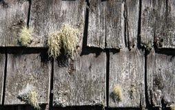 Rustic wooden shingles Stock Image