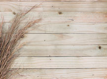Rustic Wooden Slat Wall. Rustic horizontal wooden stat wall with saw grass edging Royalty Free Stock Photography
