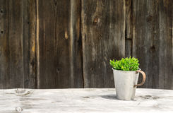 Rustic wooden table and wall with green plant. Alpine hut. Rustic wooden table and wall with green plant on sunny day at a rural hut in the Alps Royalty Free Stock Image