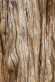 Rustic wooden texture Royalty Free Stock Images
