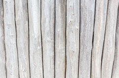 Rustic wooden wall. Royalty Free Stock Image