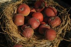 Rustical Äpfel Lizenzfreies Stockfoto