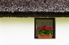 Rustical window on white wall with geranium. And reed roof Stock Photo