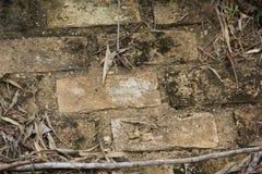 Rusticom tegelstenvägg med desgates och sidor royaltyfri foto