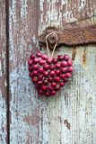 Rustiek Rood Berry Heart Hanging stock afbeelding