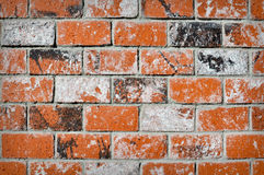 Rustieke Bakstenen Stock Afbeelding