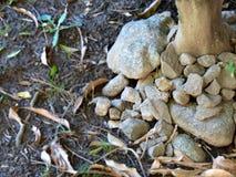 Rustieke basis van rotsen Stock Afbeelding