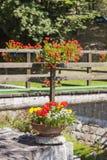 Rustieke Bloemendecoratie Royalty-vrije Stock Fotografie
