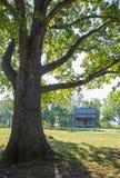 Rustieke cabine Royalty-vrije Stock Afbeeldingen