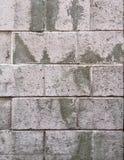 Rustieke grungy stedelijke bakstenen muur in wit en grijs Royalty-vrije Stock Foto's