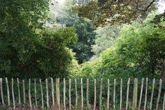 Rustieke houten omheiningsbarrière van het bos verder Royalty-vrije Stock Fotografie
