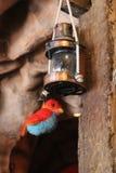 Rustieke olielamp met stuk speelgoed vogel het hangen bij de bodem Royalty-vrije Stock Afbeelding