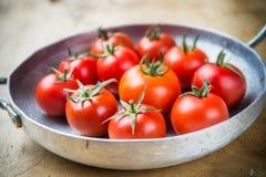 Rustieke tomaten in een metaalkoekepan Stock Foto