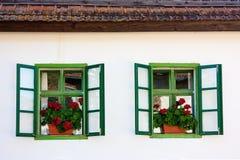 Rustieke vensters met bloemen Royalty-vrije Stock Afbeelding