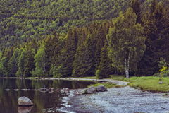 Rustig meerlandschap Royalty-vrije Stock Fotografie