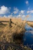 Rustig Nederlands landschap stock foto