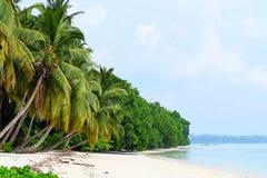 Rustig Zeegezicht - Wit Sandy Beach met Azure Water met Weelderige Groene Palmen - Vijaynagar, Havelock, Andaman Nicobar, India royalty-vrije stock afbeelding
