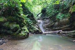 Rustige beboste die klippen met klimop en mos met stromende waterval worden behandeld stock fotografie
