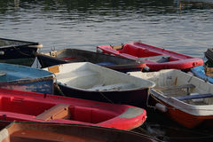 Rustige scène van het roeien van boten Stock Fotografie