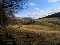 Rustige Schotse nauwe vallei royalty-vrije stock afbeeldingen