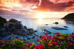 Rustige strandtoevlucht, mooie ochtendglorie Stock Afbeeldingen