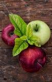 Rustikale Äpfel der kürzlich geernteten Ernte Lizenzfreies Stockbild