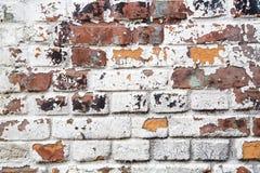 Rustikale alte Backsteinmauer-Beschaffenheit Lizenzfreie Stockfotos
