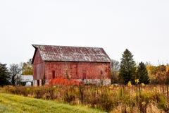 Rustikale alte Scheune mit Feld von Fall Farben stockfotos
