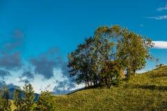 Rustikale Hütte Lizenzfreies Stockbild