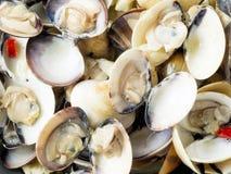 Rustikale italienische vongole Muscheln im Weißweinsoßen-Lebensmittelhintergrund Stockfotografie