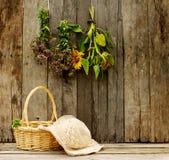 Rustikale landwirtschaftliche Szene. stockfotografie