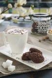 Rustikale Plätzchen mit Kakao und Pistazien auf weißem Behälter Stockfoto