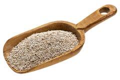 Rustikale Schaufel von weißen chia Samen stockfoto
