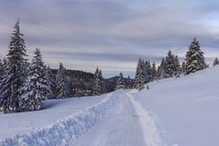 Rustikale Straße im Winter Stockfotos