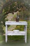 Rustikale Tabelle unter einem Baum Lizenzfreies Stockbild