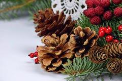 Rustikale Weihnachtsdekorationen Verschiedene Kegel Nahaufnahme stockfotografie