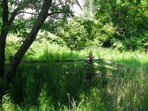 Rustikaler alter Zaun auf dem Gebiet des Grases Lizenzfreies Stockbild