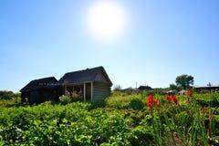 Rustikaler Gemüsegarten hinter dem Haus Stockbild