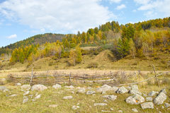 Rustikaler Herbst Lizenzfreies Stockbild