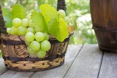 Rustikaler Korb von frischen grünen Trauben auf einer Holzoberfläche Stockfotografie