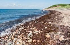 Rustikaler Rhode Island Coastline Stockbild