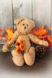 Rustikaler Teddybär Stockfotografie