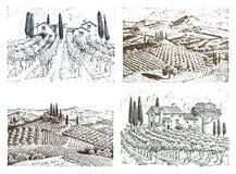 Rustikaler Weinberg Landwirtschaftliche Landschaft mit Häusern Solar-Toskana-Hintergrund Felder und Zypressenbäume Ernten und lizenzfreie abbildung