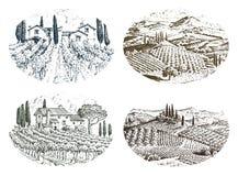Rustikaler Weinberg Landwirtschaftliche Landschaft mit Häusern Solar-Toskana-Hintergrund Felder und Zypressenbäume Ernten und vektor abbildung