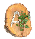 Rustikales hölzernes Alphabet Lizenzfreie Stockbilder