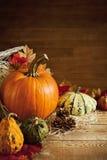 Rustikales Herbststillleben mit Kopienraum Lizenzfreies Stockbild