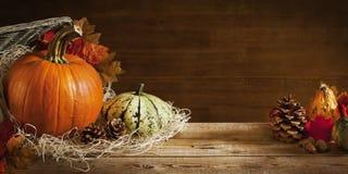 Rustikales Herbststillleben mit Kopienraum Stockbild
