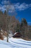 Rustikales Holzhaus mit Schnee lizenzfreies stockfoto