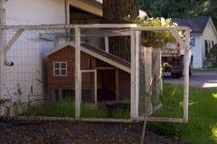 Rustikales Land Hen House Lizenzfreie Stockfotos